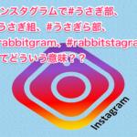 インスタグラムで#うさぎ部、#うさぎ組、#うさぎら部、#rabbitgram、#rabbitstagramってどういう意味??
